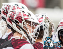 Gamecocks Lacrosse Helmet Decals